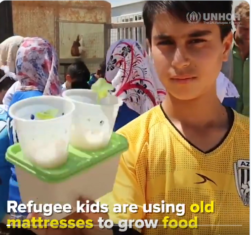 Young #refugees grow food, with recyclematerials. 🌿