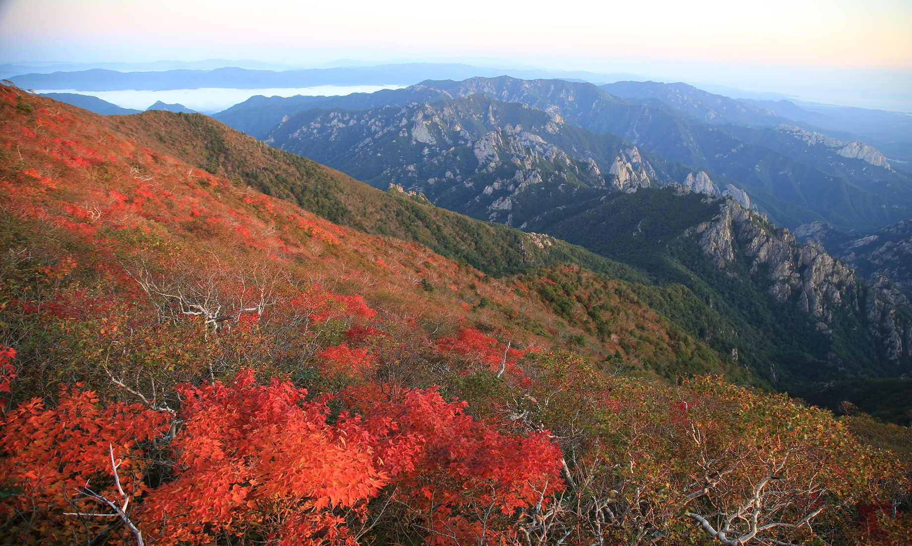Autumn hues on Mount Seorak