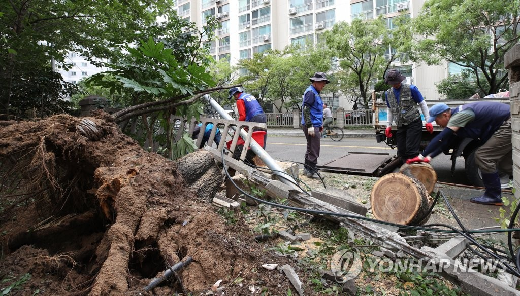 S. Korea working to recover from Typhoon Tapah damage