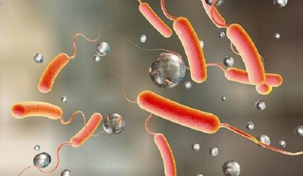 Nigeria faces growing cholera outbreak, Covid cases