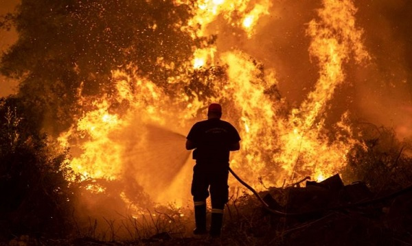 Northern Hemisphere summer wildfires emit record amount of CO2