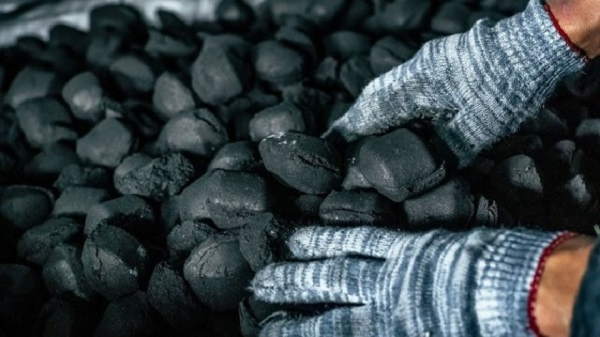 Coal replaces wind as Germany's biggest energy source in first half of the year