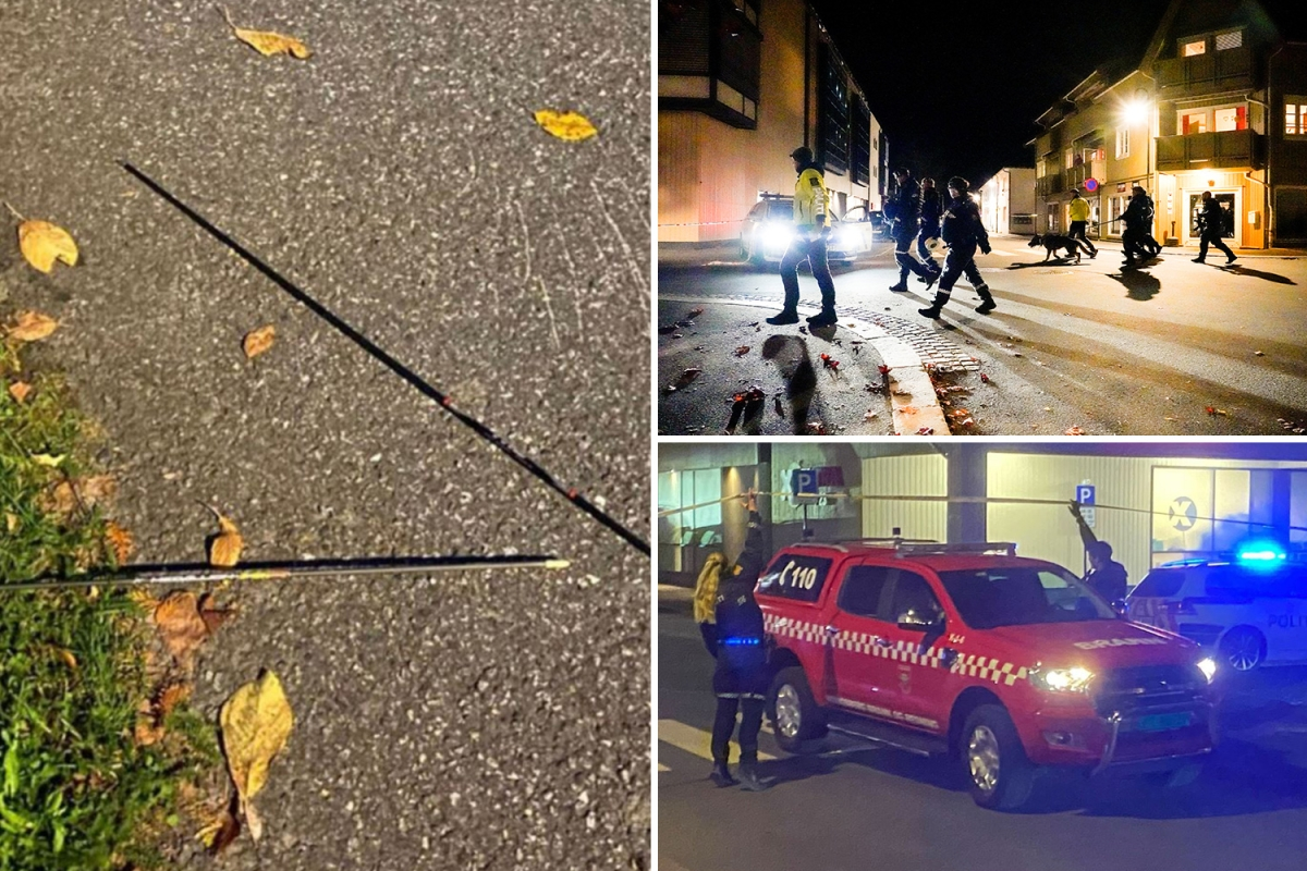 Five Killed, Two Injured In Bow-Arrow Attack In Norway: Police